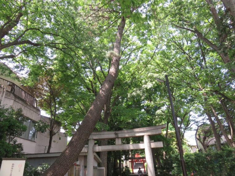 東京都目黒区 熊野神社