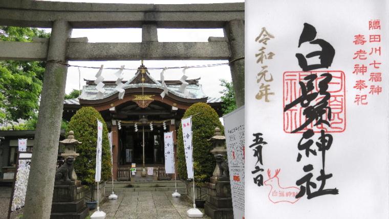 東向島白鬚神社の御朱印 - 東京都墨田区