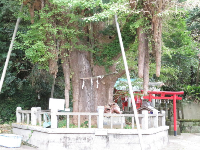 神奈川県三浦市 海南神社